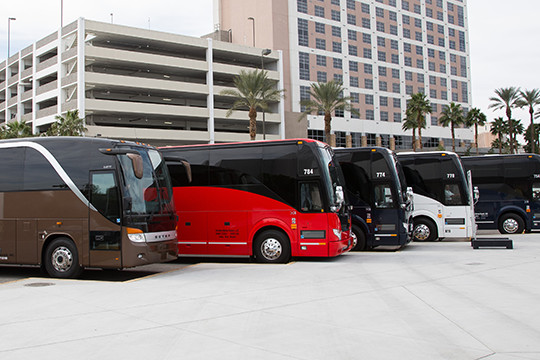 Line Up Of Shuttle Buses