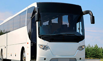 transportation company with greyhound shuttle bus
