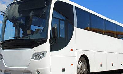 Bus For Transportation Company