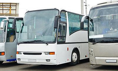Large Buses For Transportation Services
